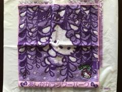 栃木のおみやげ あしかがフラワーパークのキティ藤タオルハンカチ