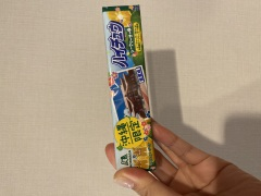 沖縄のおみやげ ハイチュウシークワーサー味