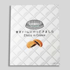 東京のおみやげ 東京ドームに行ってきましたクッキー