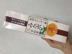 和歌山のおみやげ 紀州みかんポン酢 みかポン
