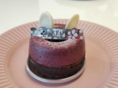 埼玉のおみやげ パティスリー サクラのケーキ